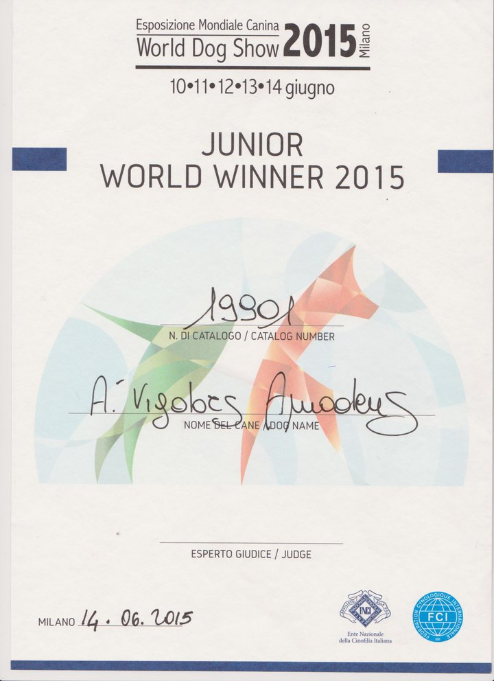 a-vigdors-amadeus-juniorworldwinner-2015